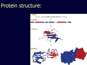 Protein structure Angles in the protein backbone spdbf