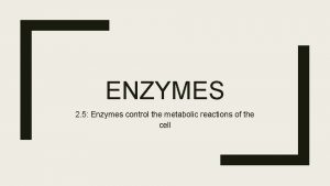 ENZYMES 2 5 Enzymes control the metabolic reactions
