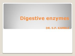 Digestive enzymes DR S P KAMBLE Enzymes help