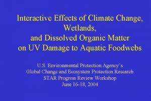 Interactive Effects of Climate Change Wetlands and Dissolved