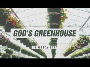 The Local Church Gods Greenhouse The Local Church
