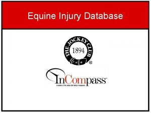 Equine Injury Database Equine Injury Database The Equine
