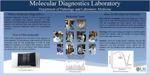 Molecular Diagnostics Laboratory Department of Pathology and Laboratory