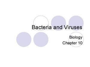 Bacteria and Viruses Biology Chapter 10 Kingdom Monera