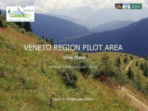 VENETO REGION PILOT AREA Silvia Obber Osservatorio Regionale