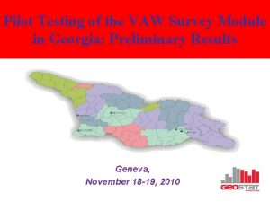Pilot Testing of the VAW Survey Module in