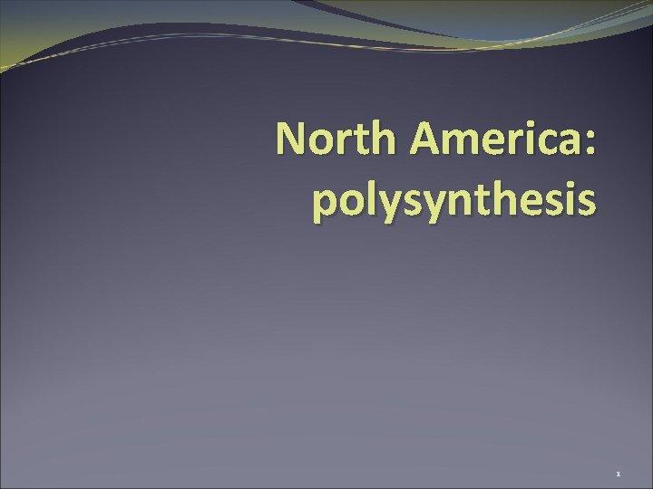 North America polysynthesis 1 America North America Mesoamerica