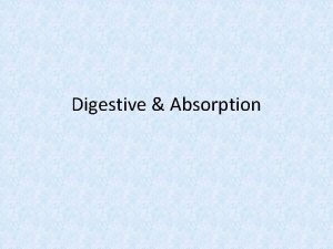 Digestive Absorption Digestion Absorption Digestion is the process