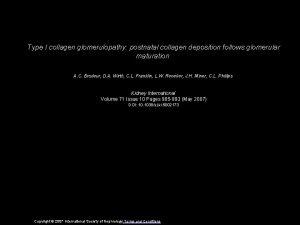 Type I collagen glomerulopathy postnatal collagen deposition follows