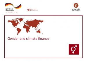 Gender and climate finance Where does gender issue