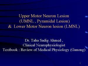 Upper Motor Neuron Lesion UMNL Pyramidal Lesion Lower