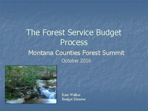 The Forest Service Budget Process Montana Counties Forest