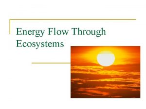 Energy Flow Through Ecosystems Ecosystem and Energy Roles