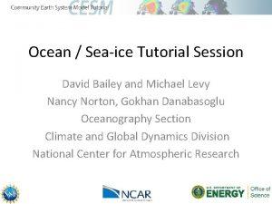 Ocean Seaice Tutorial Session David Bailey and Michael