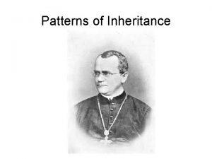 Patterns of Inheritance About Mendel Mendel grew up