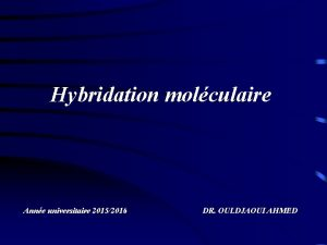 Hybridation molculaire Anne universitaire 20152016 DR OULDJAOUI AHMED