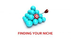 FINDING YOUR NICHE What is a niche A