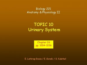 Biology 221 Anatomy Physiology II TOPIC 10 Urinary