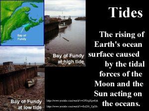 Tides Bay of Fundy at high tide Bay