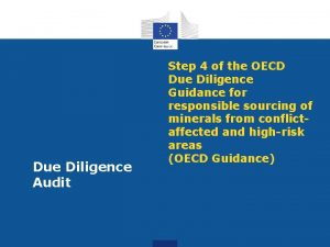 Due Diligence Audit Step 4 of the OECD