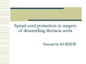 Spinal cord protection in surgery of descending thoracic