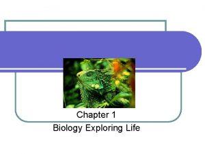 Chapter 1 Biology Exploring Life Chapter 1 Biology