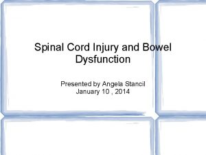 Spinal Cord Injury and Bowel Dysfunction Presented by