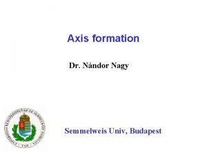 Axis formation Dr Nndor Nagy Semmelweis Univ Budapest
