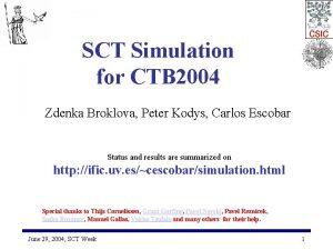 SCT Simulation for CTB 2004 Zdenka Broklova Peter