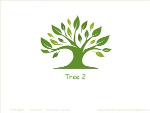 Tree 1 Tree Definitions 2 Binary Tree Traversals