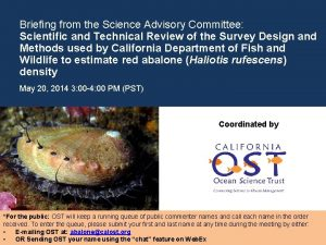 Briefing from the Science Advisory Committee Scientific and
