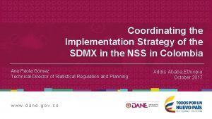 Coordinating the Implementation Strategy of the SDMX in