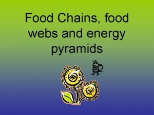 Food Chains food webs and energy pyramids Co