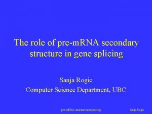 The role of prem RNA secondary structure in