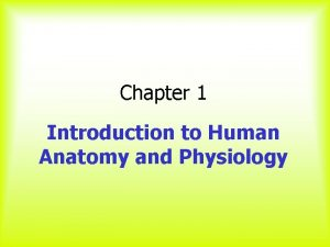 Chapter 1 Introduction to Human Anatomy and Physiology
