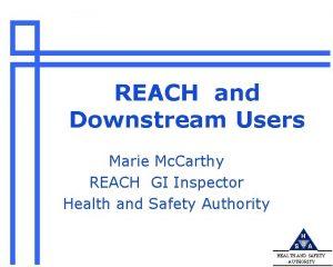 REACH and Downstream Users Marie Mc Carthy REACH