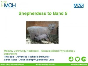 Shepherdess to Band 5 Medway Community Healthcare Musculoskeletal