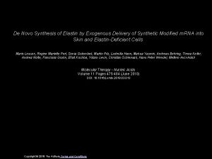 De Novo Synthesis of Elastin by Exogenous Delivery