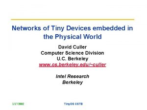 Networks of Tiny Devices embedded in the Physical