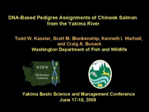 DNABased Pedigree Assignments of Chinook Salmon from the