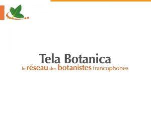 Les missions de Tela Botani Mettre en relation
