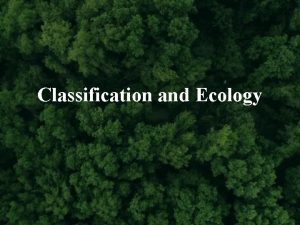 Classification and Ecology What is a Species Species