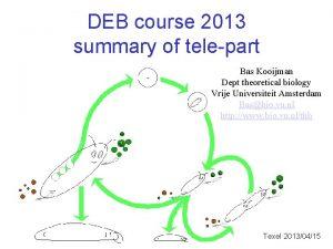 DEB course 2013 summary of telepart Bas Kooijman