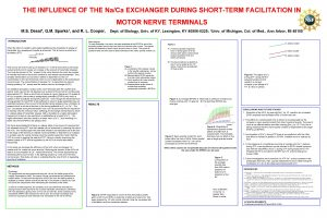 THE INFLUENCE OF THE NaCa EXCHANGER DURING SHORTTERM