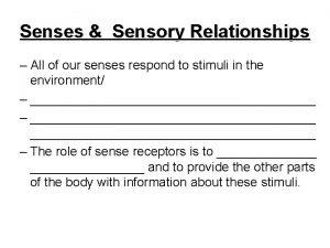 Senses Sensory Relationships All of our senses respond