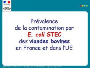 Prvalence de la contamination par E coli STEC