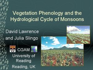 Vegetation Phenology and the Hydrological Cycle of Monsoons