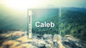 Numbers 13 26 30 Caleb Facts about Caleb