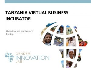 TANZANIA VIRTUAL BUSINESS INCUBATOR Overview and preliminary findings