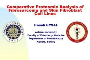 Comparative Proteomic Analysis of Fibrosarcoma and Skin Fibroblast